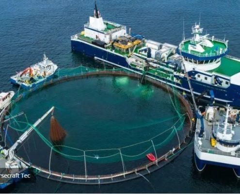 Sentralsmøring for Fiskeindustrien fra Norsecraft Tec AS